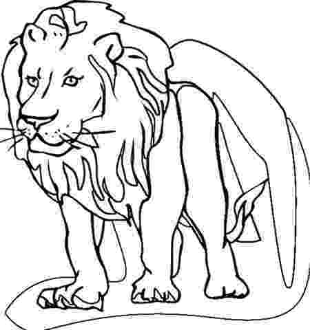 lion coloring sheets african lion coloring page free printable coloring pages lion coloring sheets