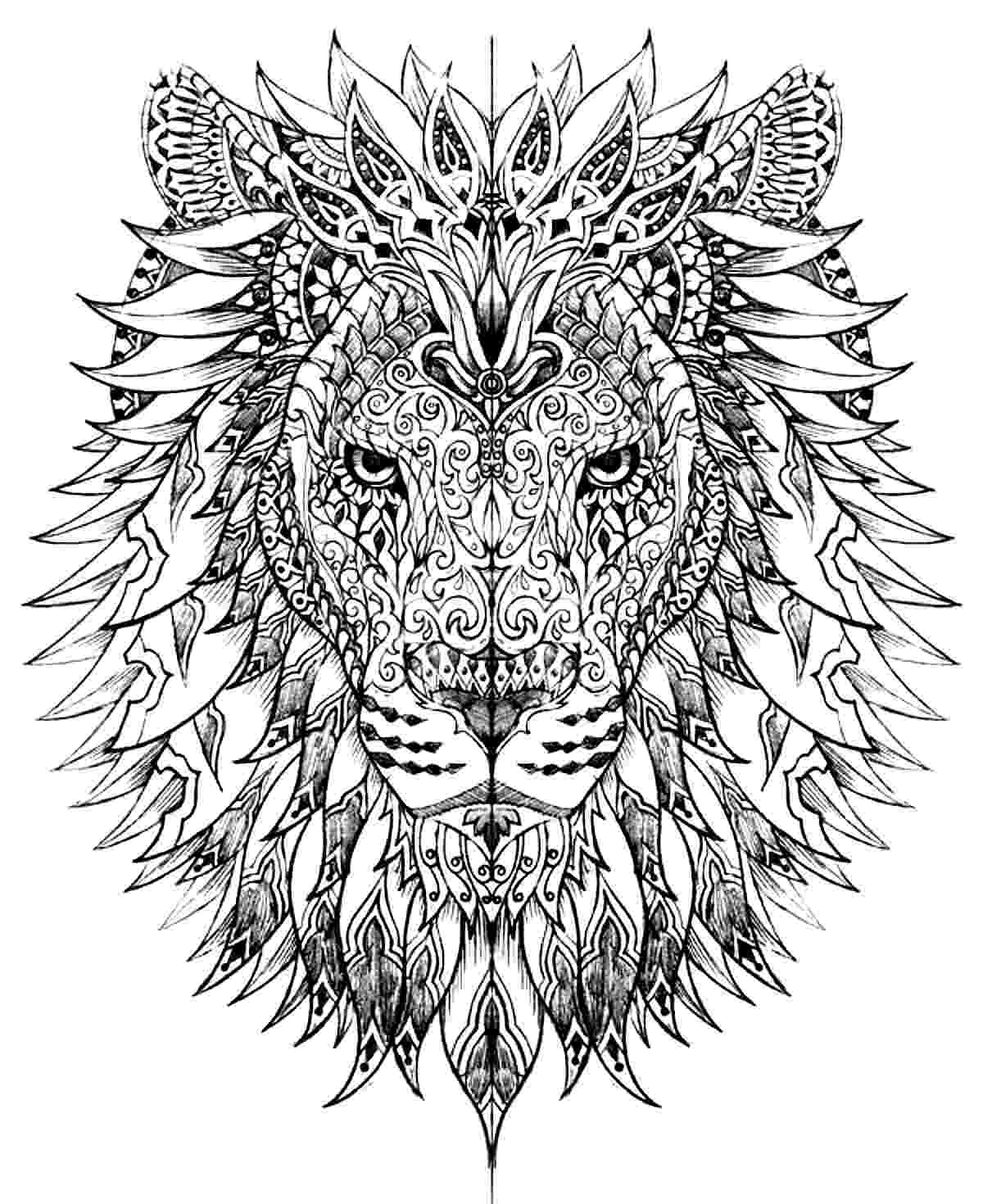 lion head coloring page lion head lions adult coloring pages page lion coloring head