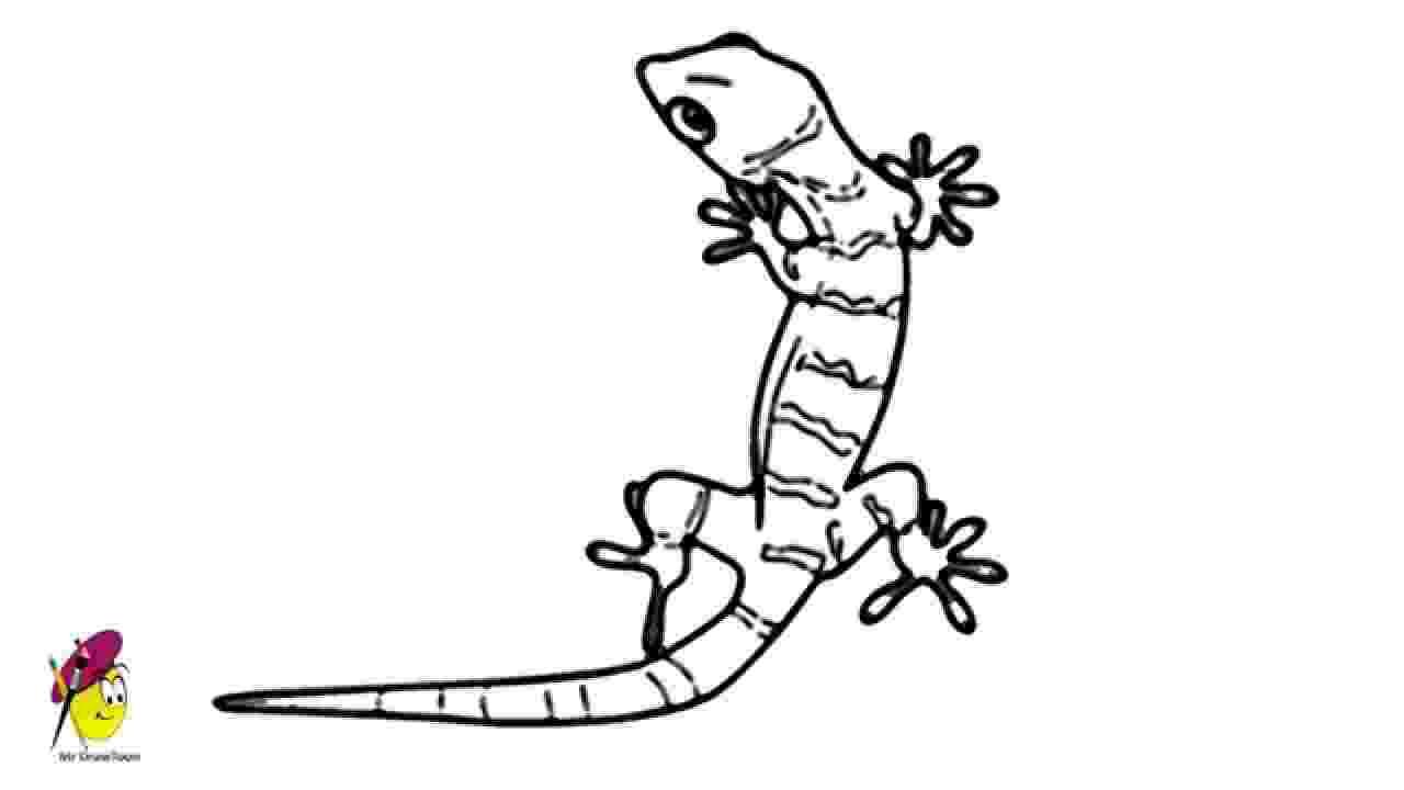 lizard sketch lazy monitor desksketch lizard sketch