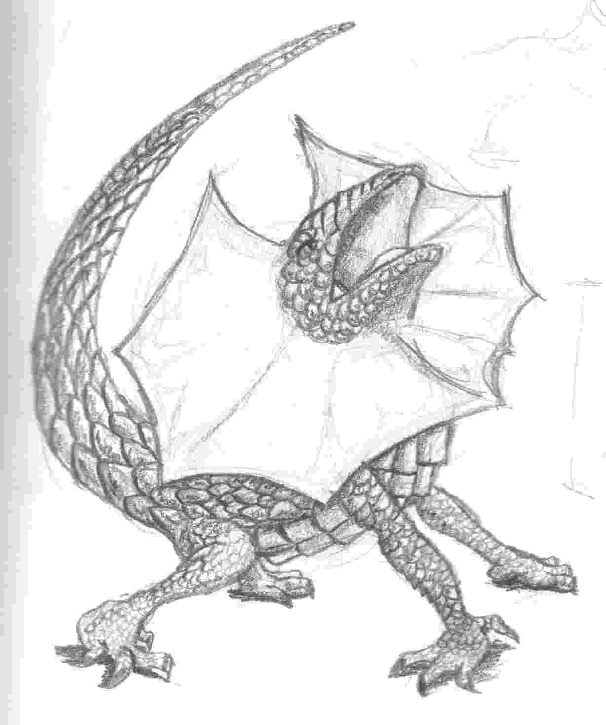 lizard sketch lizard by ashere on deviantart sketch lizard