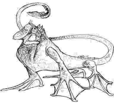 lizard sketch pnnl science engineering what about lizards lizard sketch