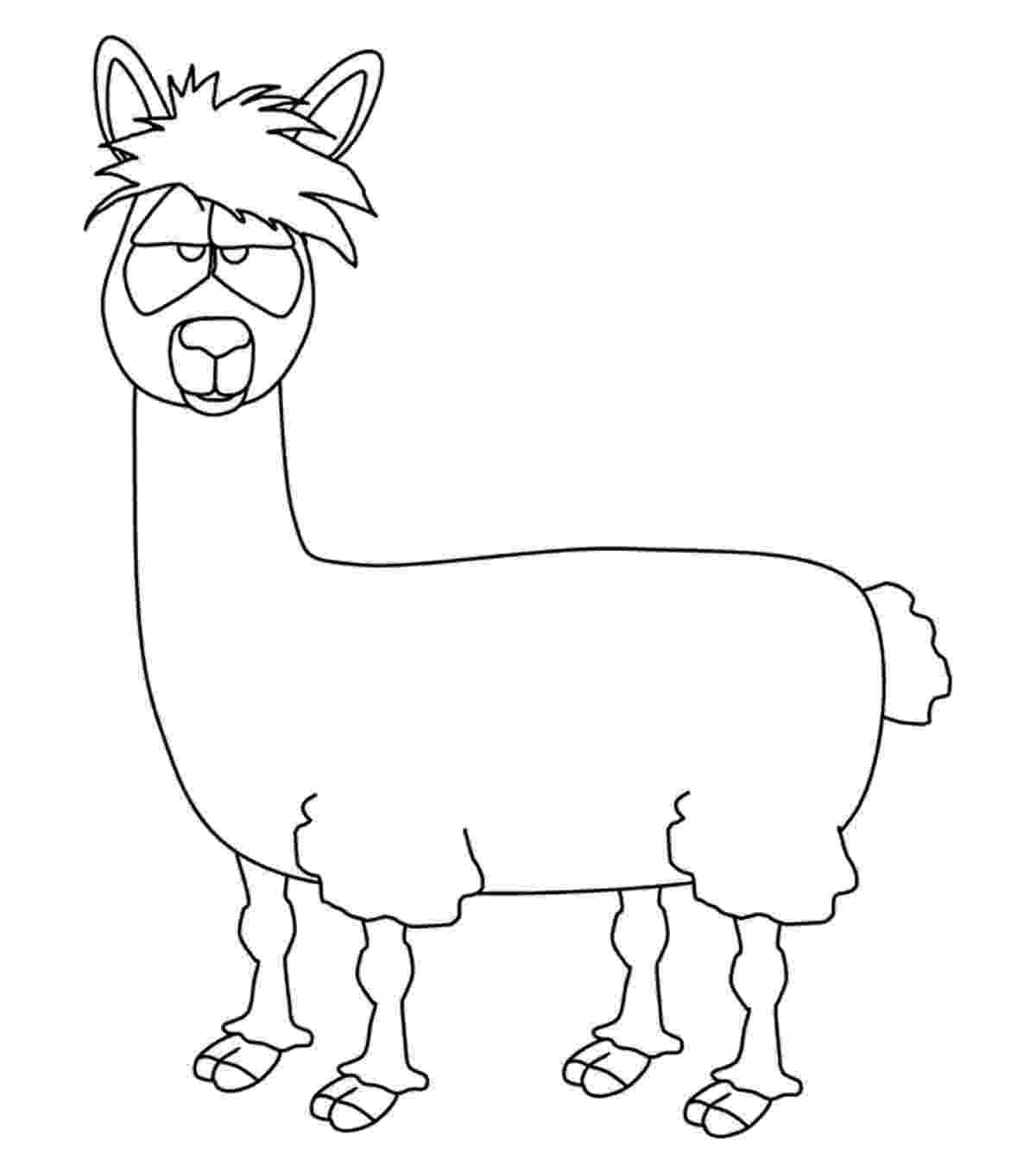 llama coloring page cute alpaca coloring page free printable pages sketch llama page coloring