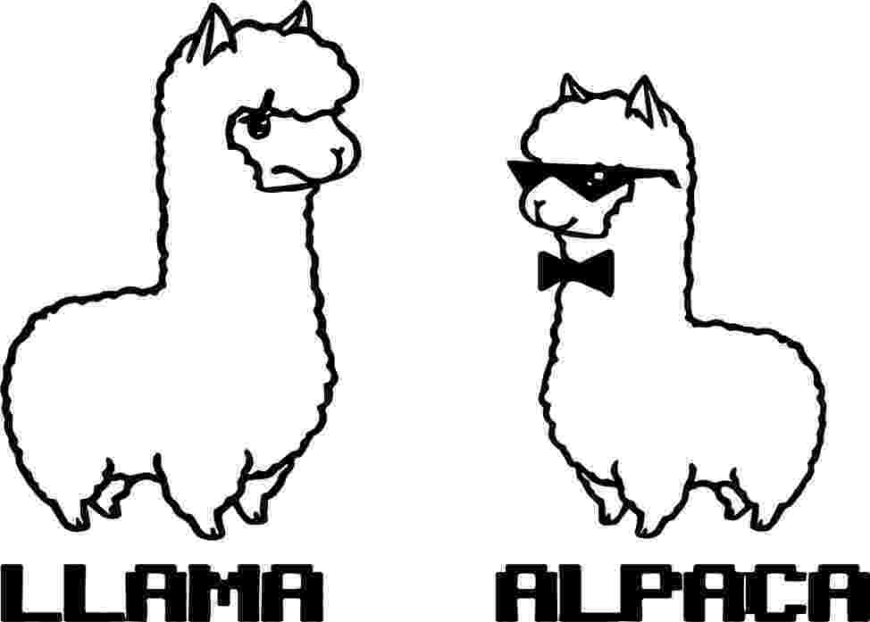 llama coloring page letter l is for llama coloring page free printable page coloring llama