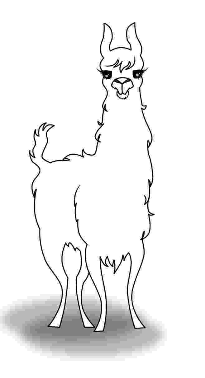 llama coloring page llama and alpaca coloring page wecoloringpagecom coloring page llama