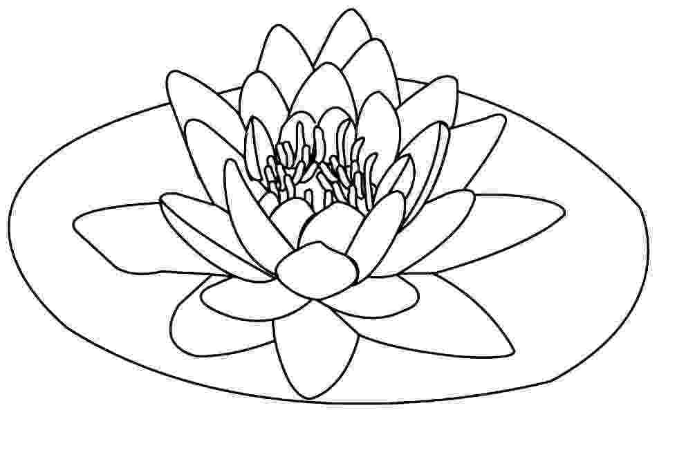 lotus flower coloring pages free printable lotus coloring pages for kids pages flower lotus coloring 1 1