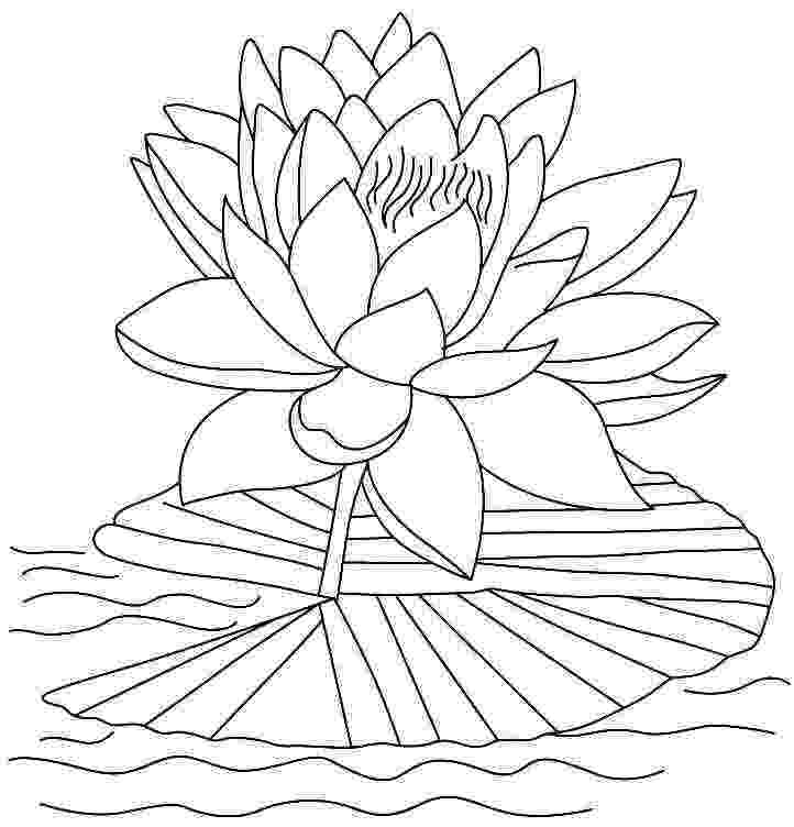 lotus flower coloring pages smallpositives start each day with a grateful heart flower lotus coloring pages