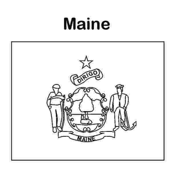 maine state flower maine state flower coloring page coloring pages state maine flower
