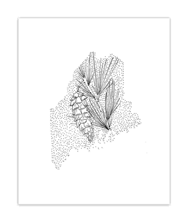 maine state flower maine white pine cone state flower drawing giclee state maine flower
