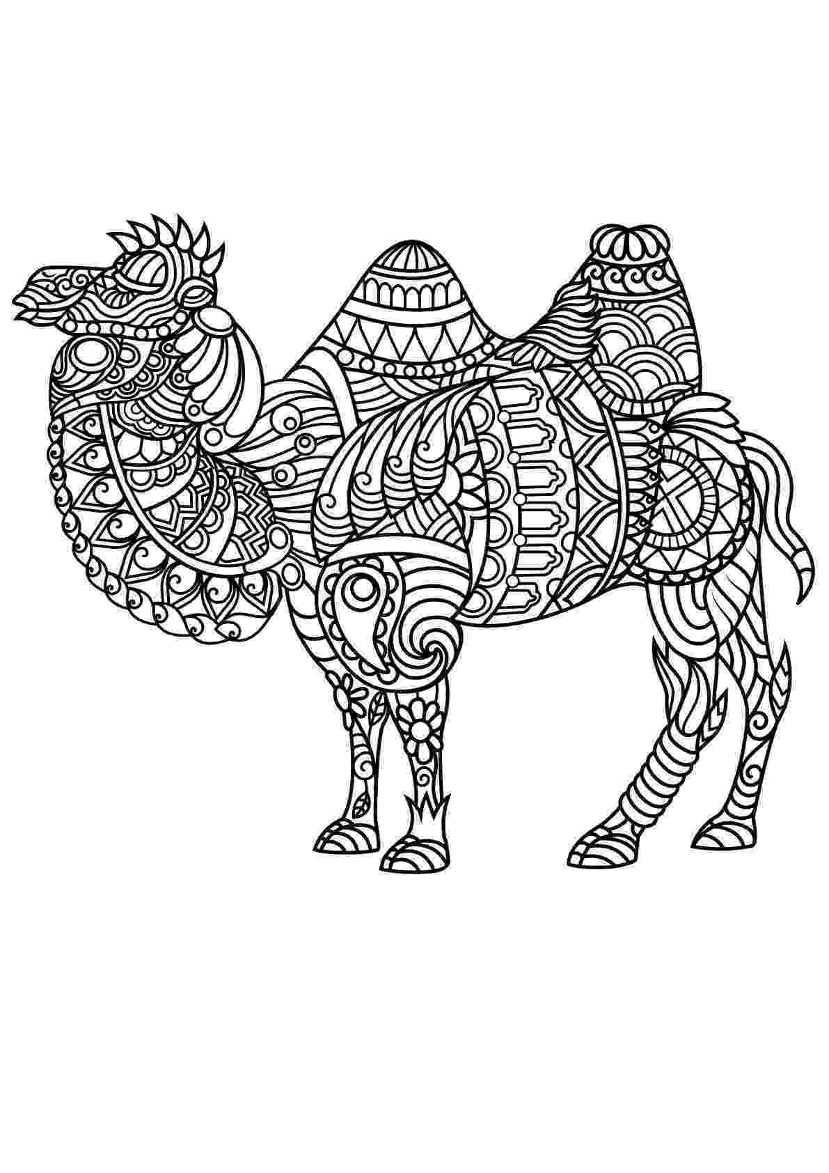 mandala animals free book camel camels dromedaries adult coloring pages animals mandala