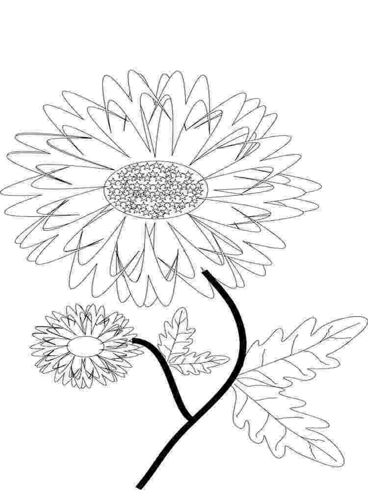 marigold coloring page marigold flower coloring pages download and print page coloring marigold