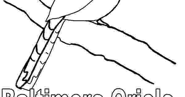maryland coloring pages md flag coloring sheet for kindergarten 20maryland coloring maryland pages