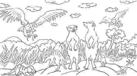 meerkat pictures to colour to pictures meerkat colour to pictures meerkat colour