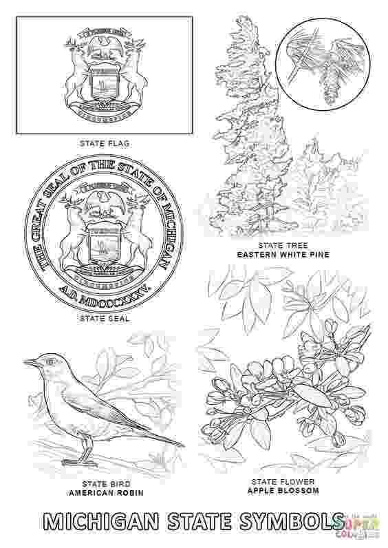 michigan state bird michigan state symbols super coloring michigan history bird state michigan