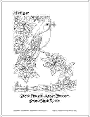 michigan state bird wisconsin state bird coloring page free printable bird michigan state