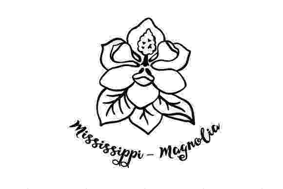 mississippi state flower mockingbird and magnolia mississippi state bird and flower flower mississippi state