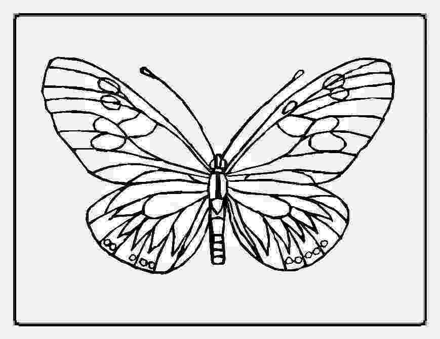 monarch butterfly coloring pages butterfly coloring pages team colors monarch pages butterfly coloring