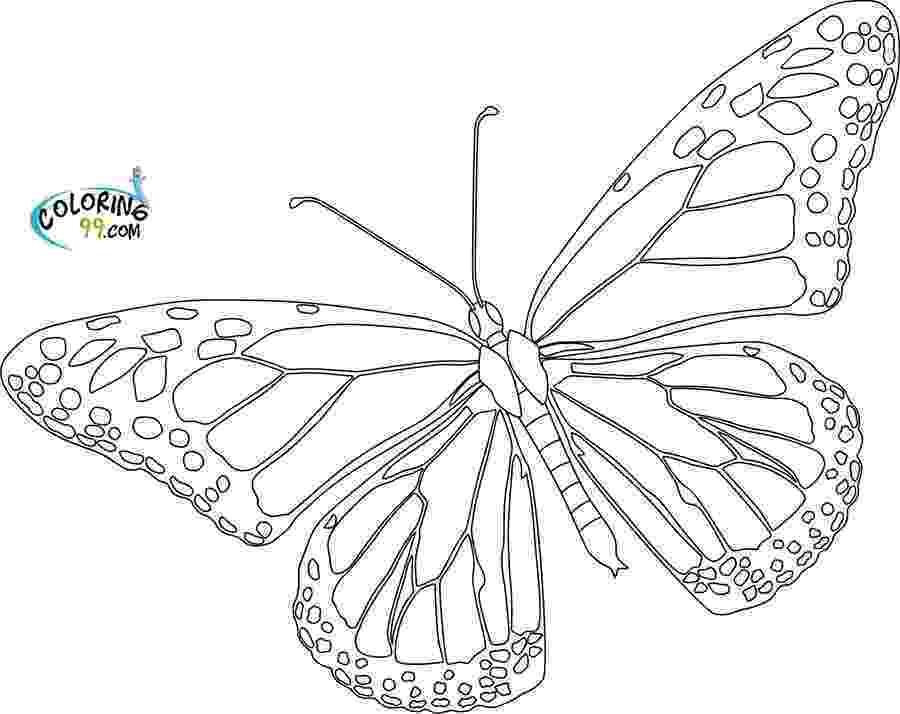 monarch butterfly coloring pages butterfly coloring pages team colors pages coloring monarch butterfly