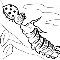 monarch butterfly life cycle coloring page free monarch butterfly and caterpillars coloring images monarch life page coloring butterfly cycle