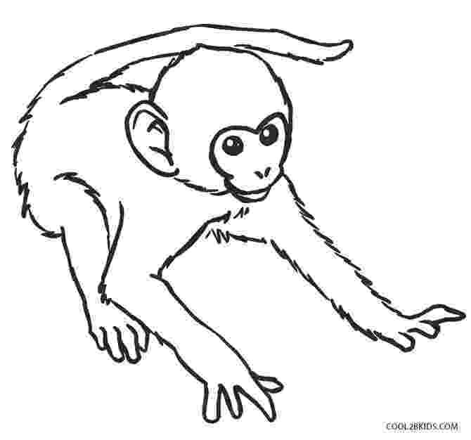 monkey colouring page cartoon monkeys drawing at getdrawingscom free for monkey page colouring