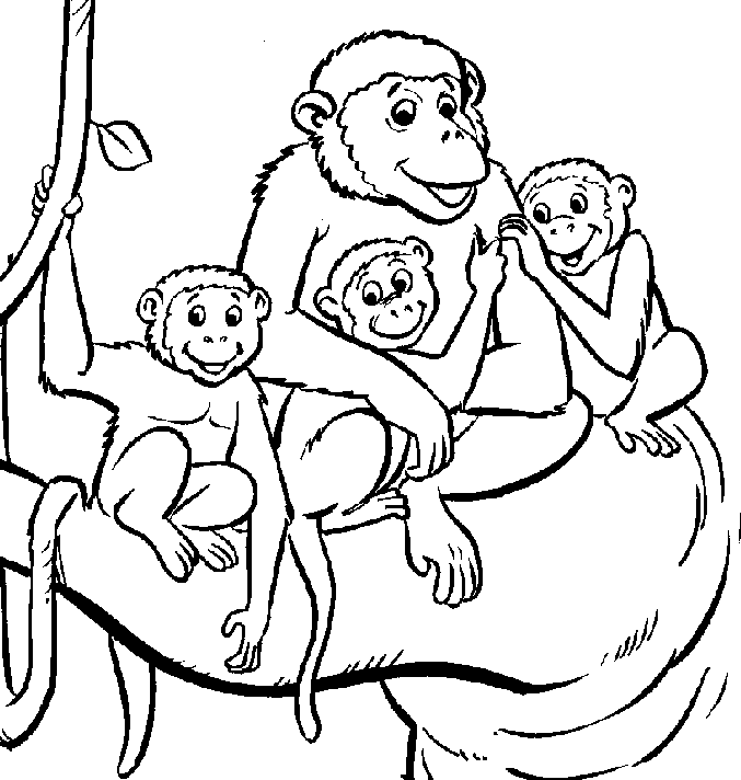 monkeys coloring pages monkey coloring pages free download on clipartmag pages monkeys coloring