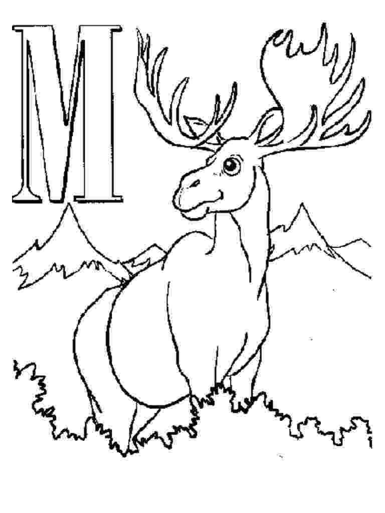 moose pictures to color cute moose coloring page download print online color pictures to moose