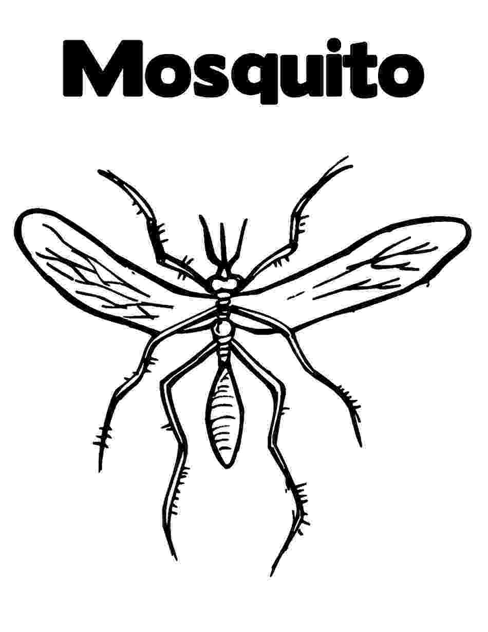 mosquito coloring page mosquito animals coloring pages coloring page book for kids page coloring mosquito