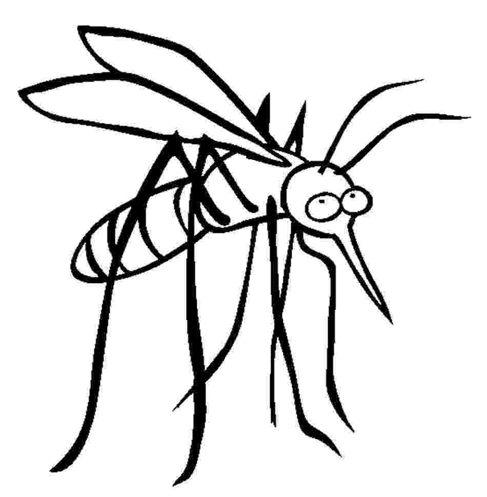 mosquito coloring page mosquito coloring pages coloring mosquito page