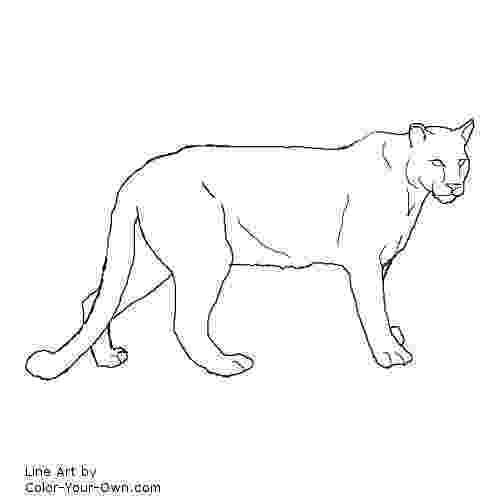 mountain lion coloring pages pin on my coloring pages lion pages coloring mountain