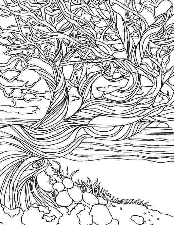 nature coloring pages for adults free printable adult coloring pages nature pages coloring for adults