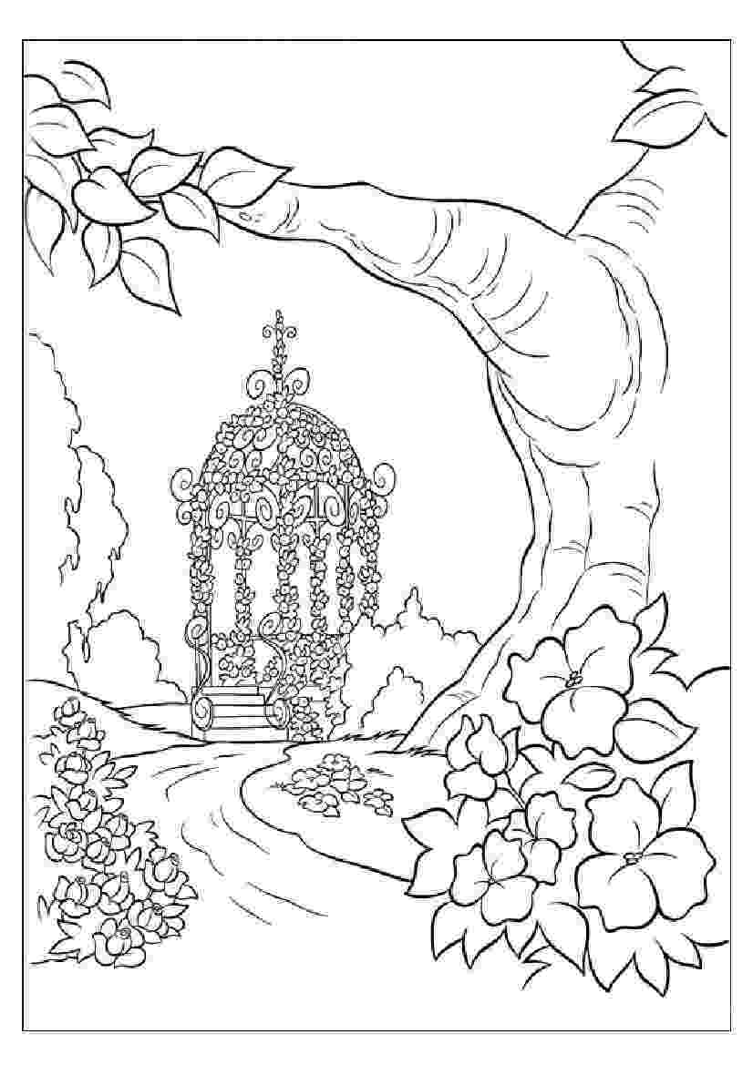 nature coloring pages for adults nature coloring pages coloringpagesabccom for nature adults coloring pages