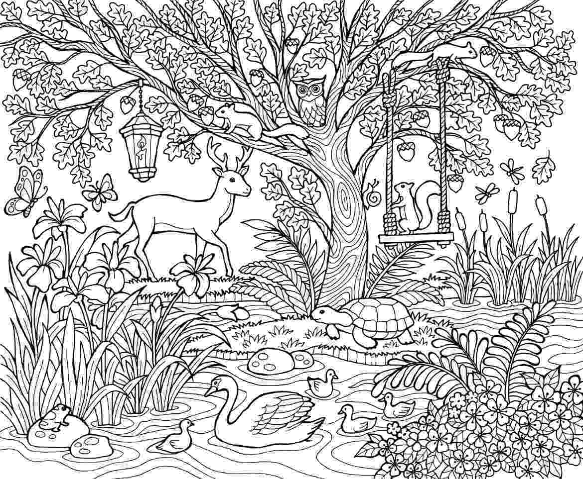 nature coloring pages for adults nature coloring pages to download and print for free nature adults for coloring pages