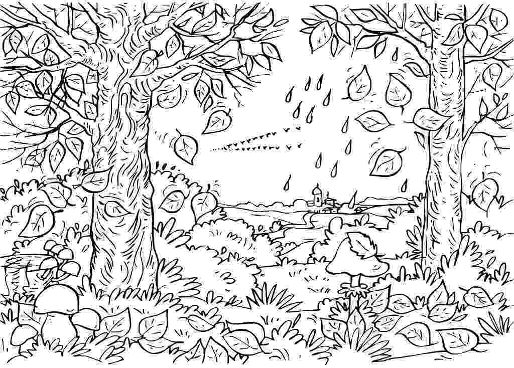 nature coloring pages for adults printable adult coloring page coloring pages nature pages adults coloring for nature