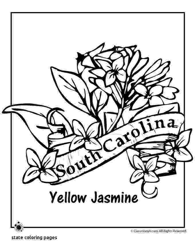 north carolina state bird picture south carolina state bird coloring page free printable carolina bird north state picture