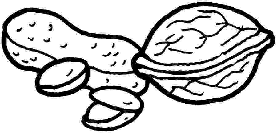 nuts coloring pages mixed nuts coloring pages coloring pages nuts coloring pages