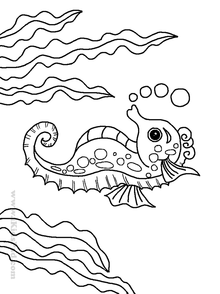 ocean animals coloring pages coloring coloring pages and seals on pinterest ocean animals pages coloring