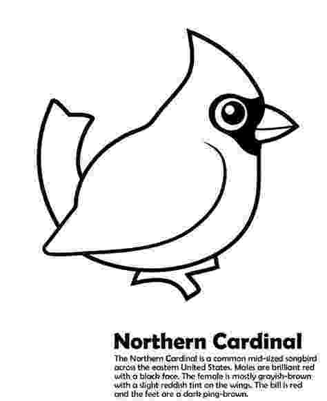 ohio state bird ohio state bird coloring page free printable coloring pages bird state ohio