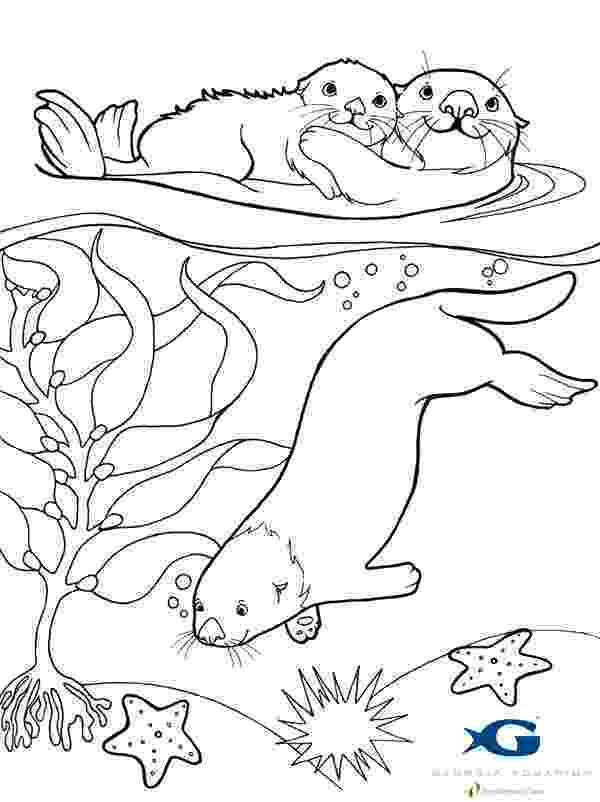 otter coloring pages otter coloring pages download and print for free otter coloring pages