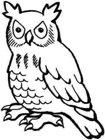 owl colour cartoon owl coloring page free printable coloring pages owl colour