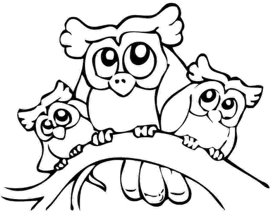 owl colouring template owl outline clipart best owl template colouring