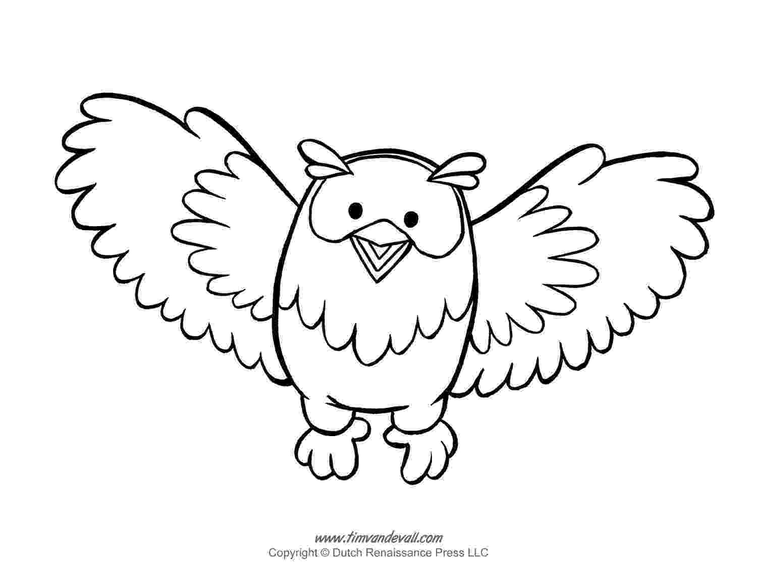 owl colouring template print download owl coloring pages for your kids colouring template owl