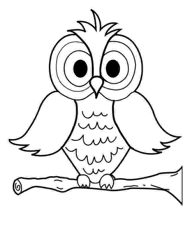 owl colouring template printable animal owl coloring sheets for kindergarten template colouring owl