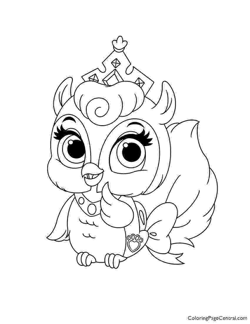 palace pet palace pets fern coloring page coloring page central palace pet