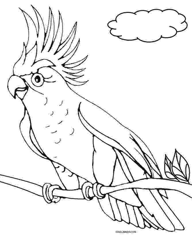parrot coloring pages coloring picture of sulfur crested cockatoo bird parrot coloring pages