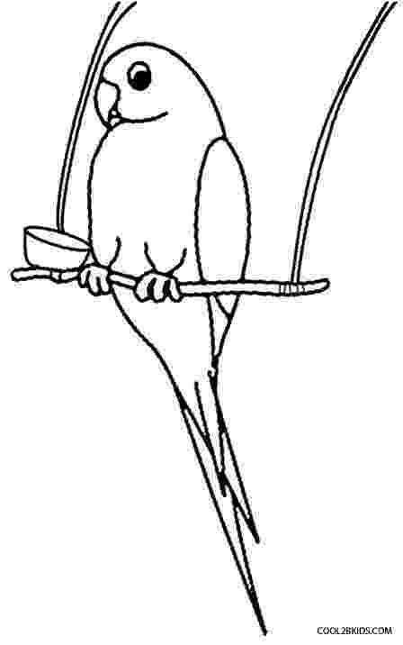parrot pictures for kids to color free printable parrot coloring pages for kids kids for to color pictures parrot