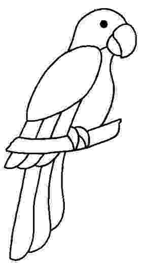 parrot pictures for kids to color sweet parrot coloring page wecoloringpagecom kids color to parrot for pictures