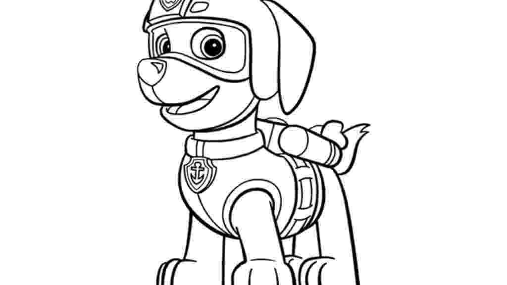 paw patrol pics zuma is a male character from paw patrol he is a paw pics patrol