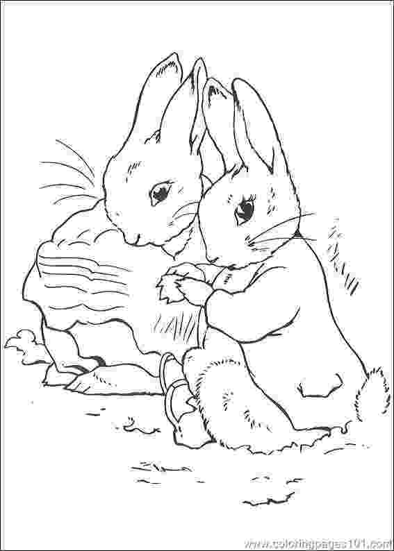 peter rabbit colouring pictures peter rabbit coloring pages pictures colouring peter rabbit