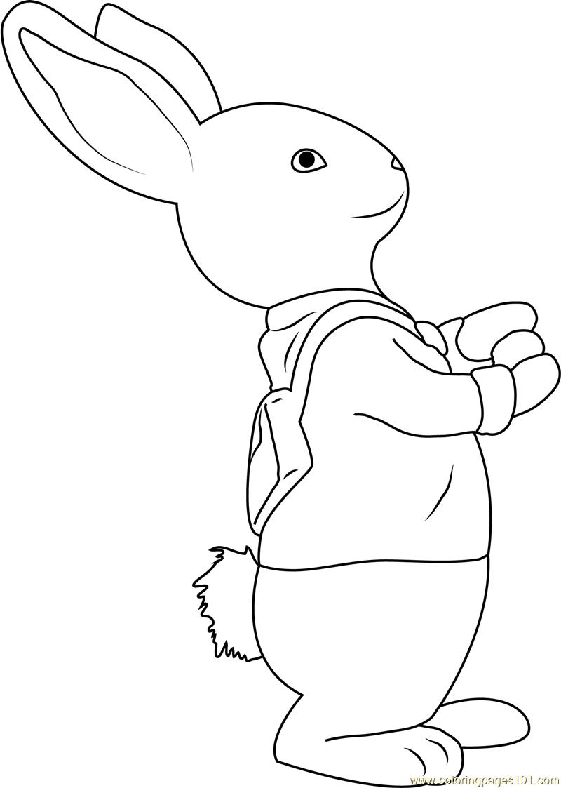 peter rabbit colouring pictures peter rabbit colour lily treehouse colouring pages colouring pictures peter rabbit