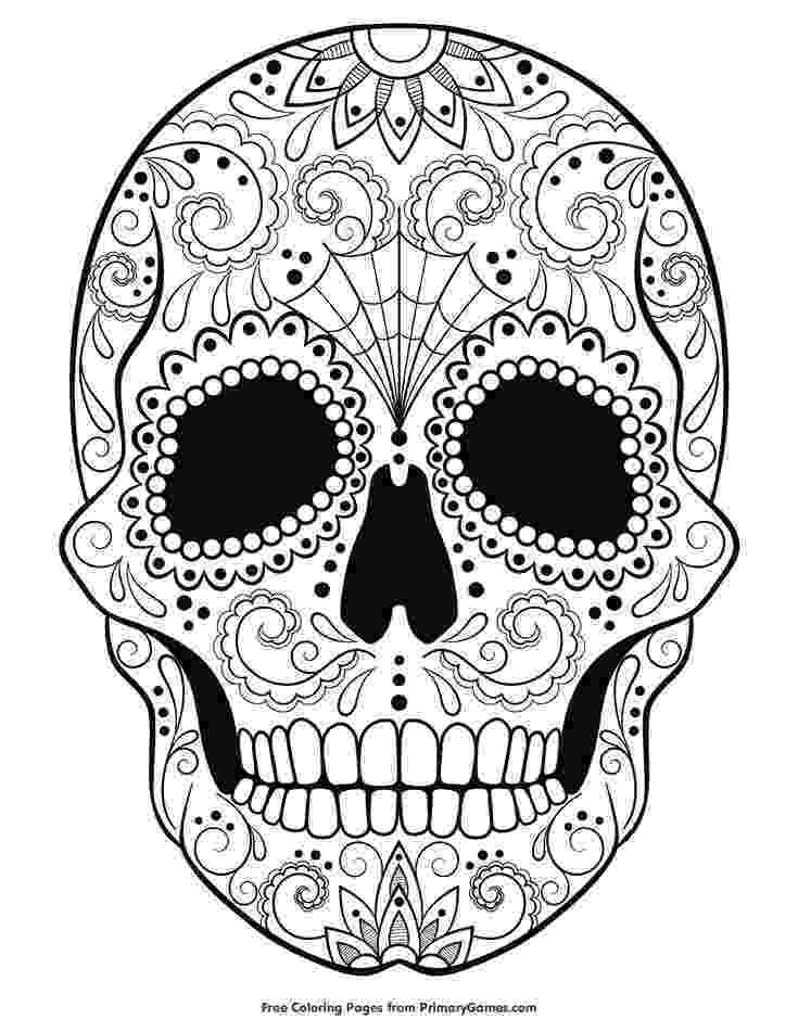 pics of sugar skulls amazoncom sugar skull dia de los muertos 8 inch pics sugar of skulls