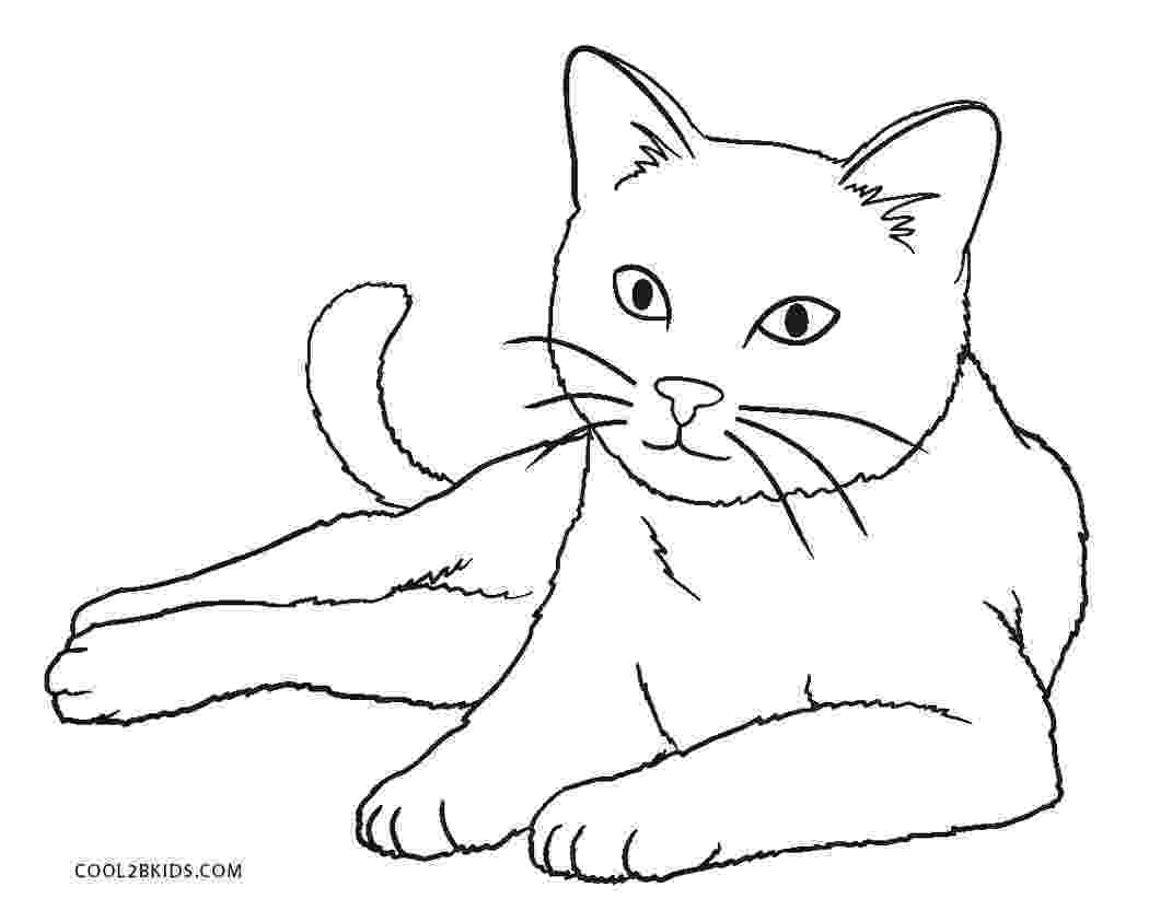 picture of a cat to color free printable cat coloring pages for kids color to picture cat of a